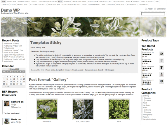 Atahualpa wordpress theme