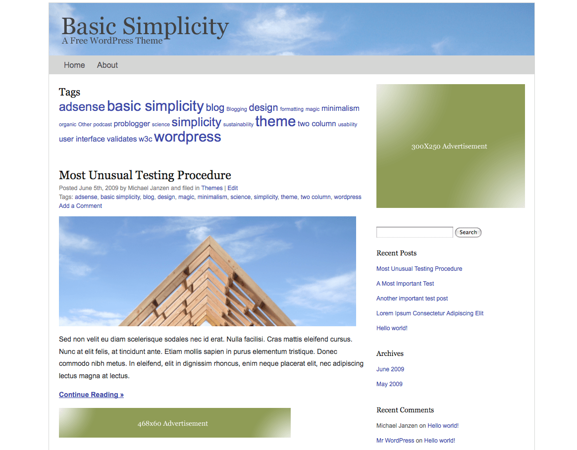 Basic Simplicity free wordpress theme