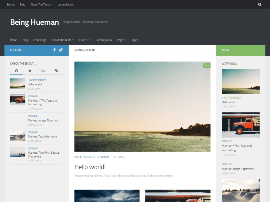 Being Hueman free wordpress theme