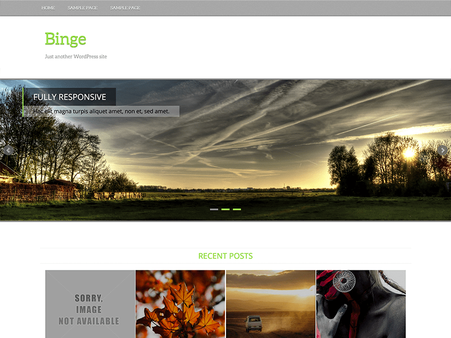 Binge wordpress theme