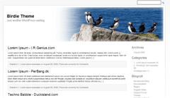 Birdie free wordpress theme