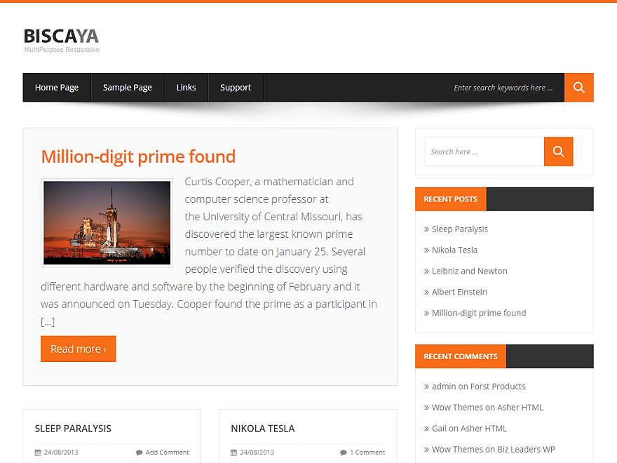 Biscayalite wordpress theme
