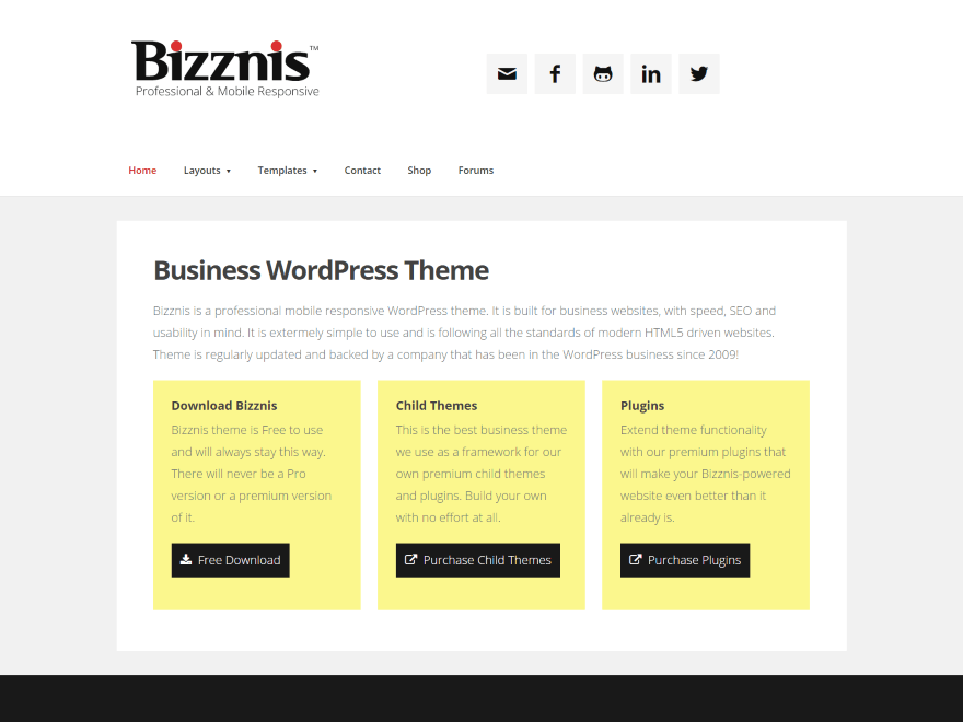 Bizznis free wordpress theme