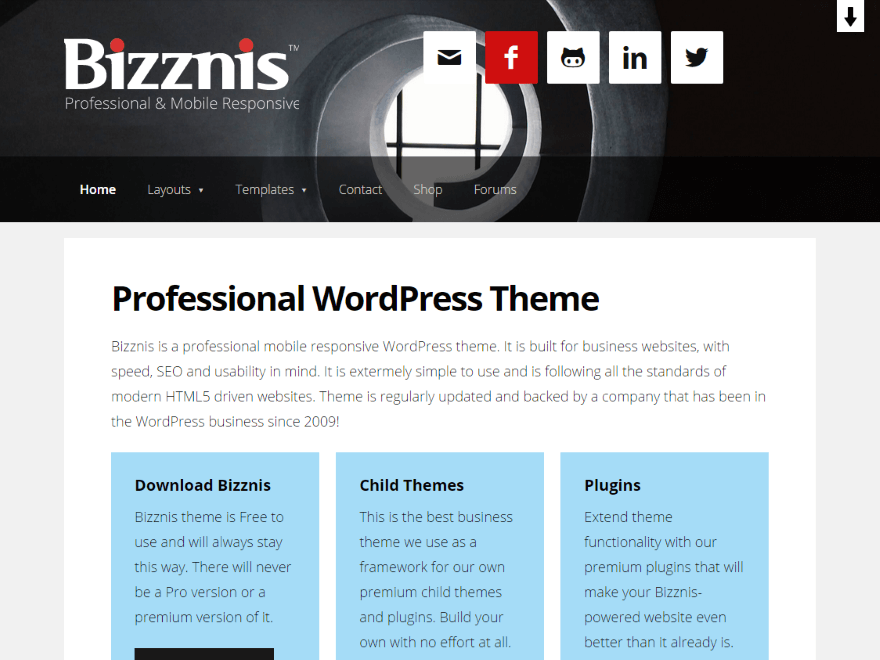 Bizznis theme wordpress gratuit