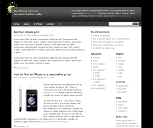 Black Splat WR free wordpress theme