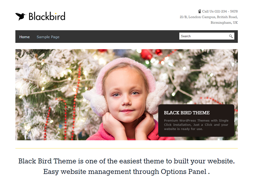 BlackBird free wordpress theme