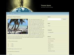 blackGlobe wordpress theme