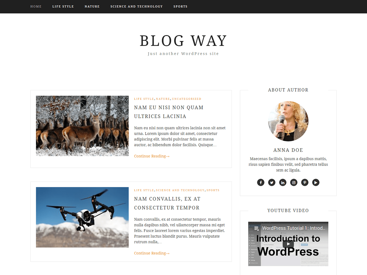 Blog Way Wordpress Theme Wordpress Org