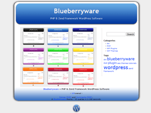 Blueberry free wordpress theme