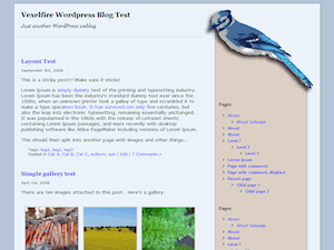 BlueJay free wordpress theme