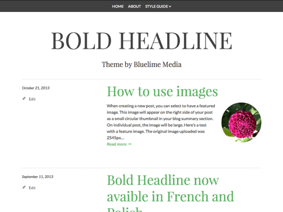 Bold Headline wordpress theme