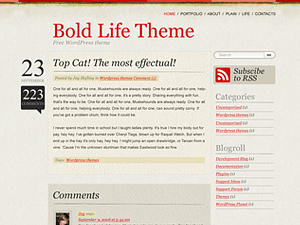 Bold Life free wordpress theme