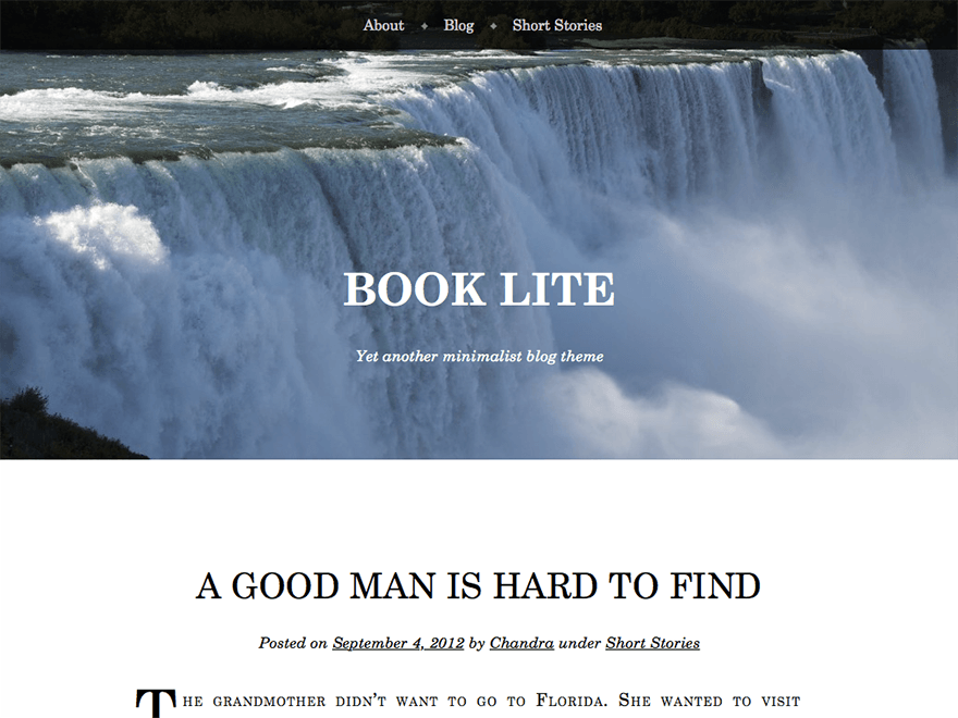Book Lite free wordpress theme