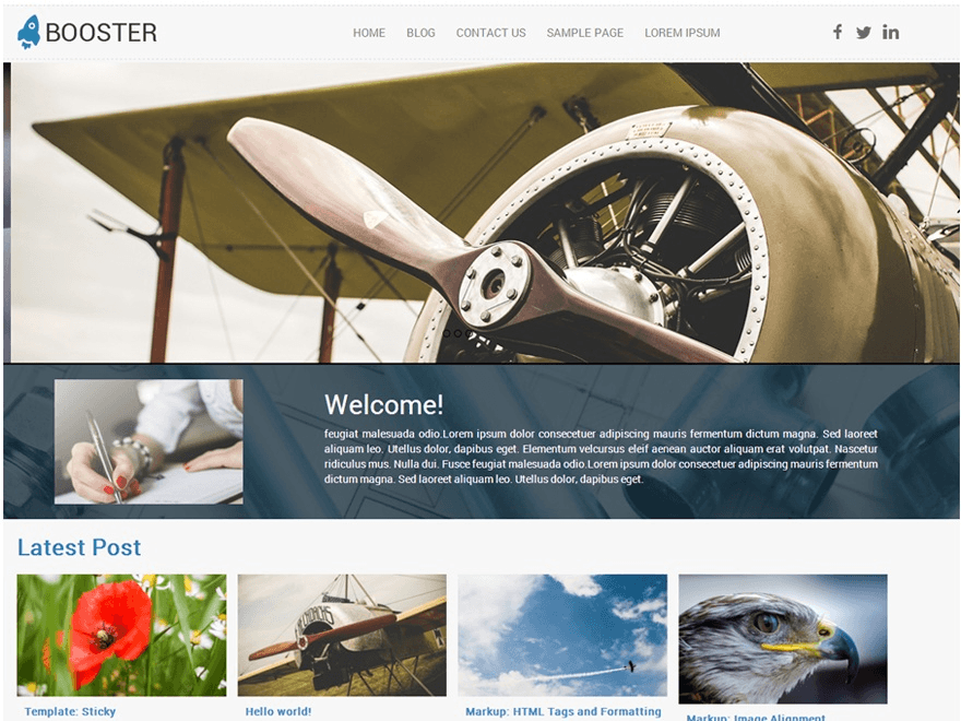 Booster wordpress theme