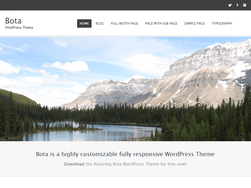 Bota free wordpress theme