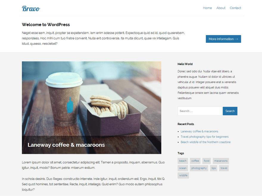 Bravo free wordpress theme