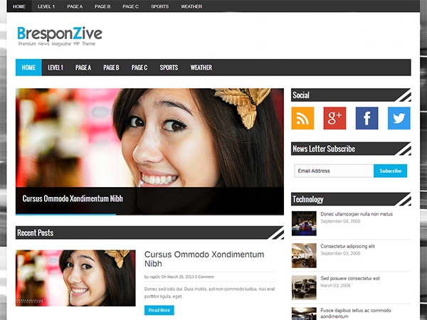 BresponZive free wordpress theme