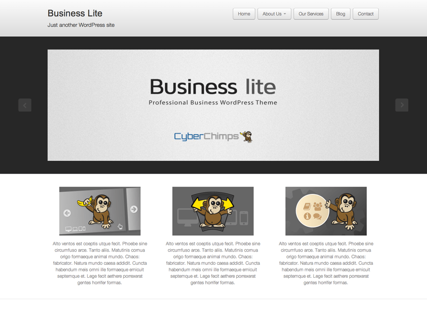 Business lite