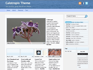 Calotropis wordpress theme