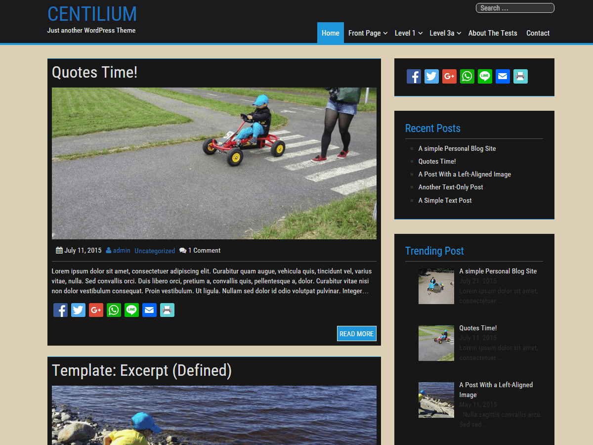 Centilium free wordpress theme