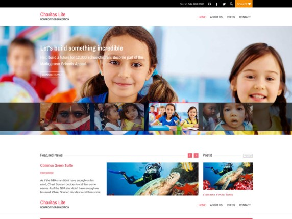 Charitas Lite wordpress theme