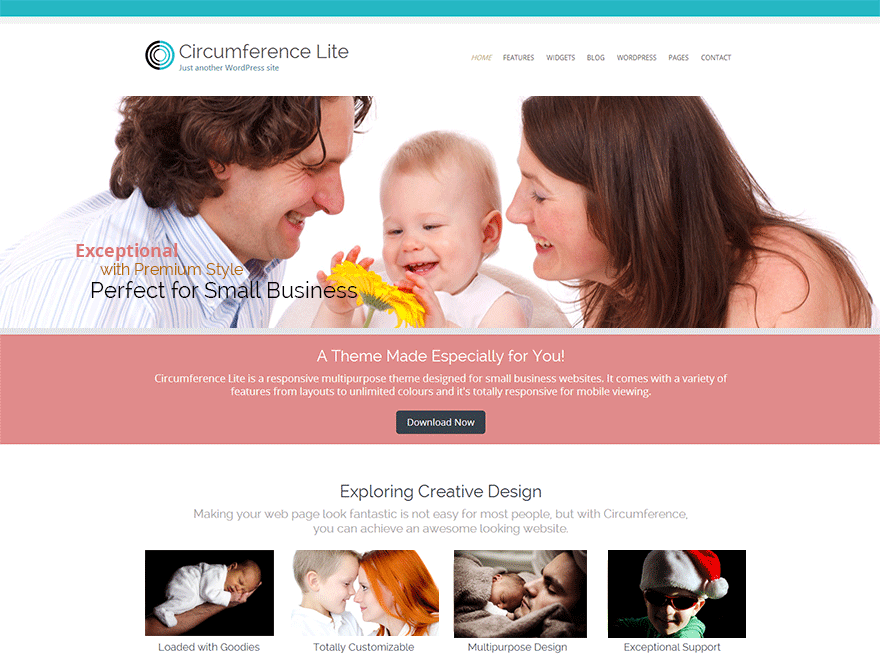 Circumference Lite free wordpress theme