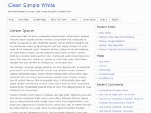 Clean Simple White