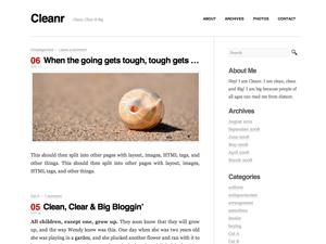 Cleanr wordpress theme