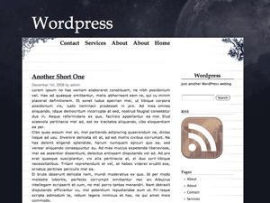 Cloudy Night free wordpress theme