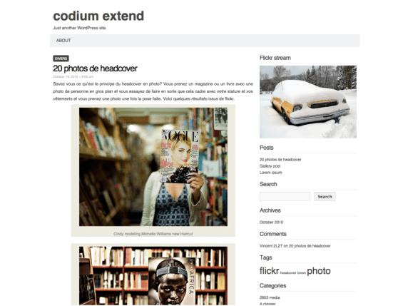 Codium Extend wordpress theme