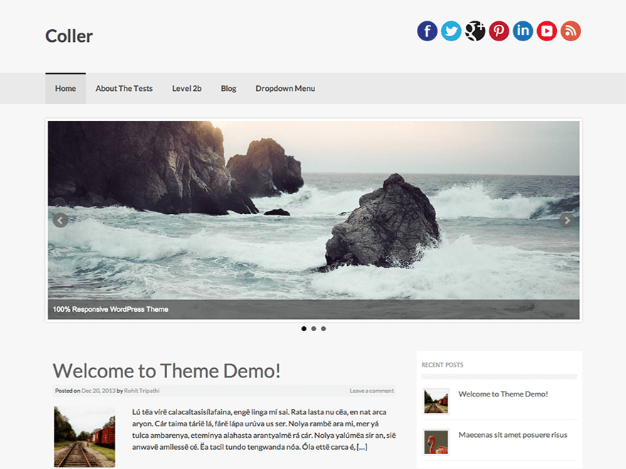Coller free wordpress theme