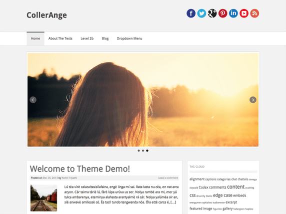 CollerAnge wordpress theme
