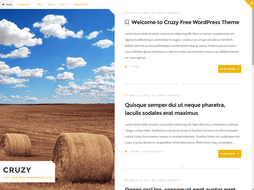 Cruzy free wordpress theme