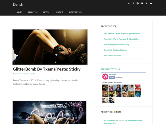 Delish wordpress theme