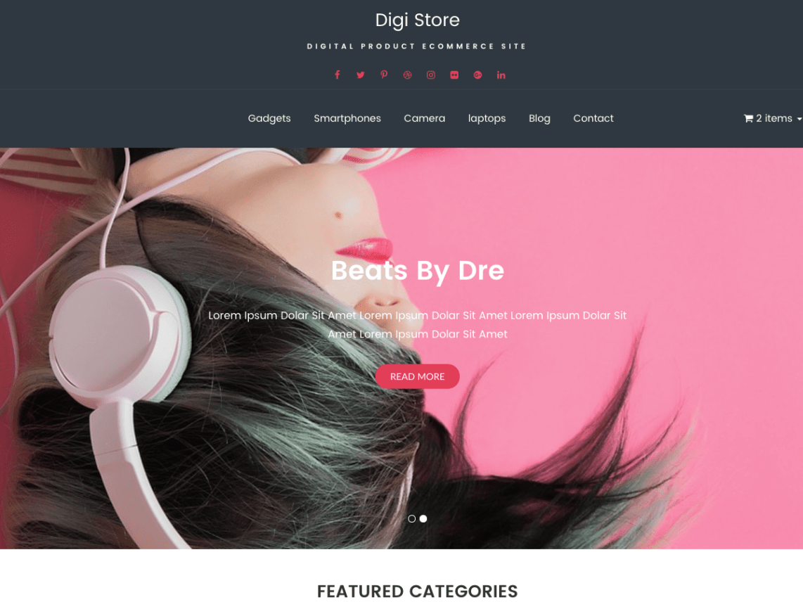 Digi Store Theme Free Download