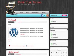Director Theme free wordpress theme