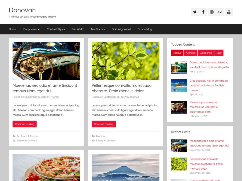 Wordpress Theme kostenlos deutsch