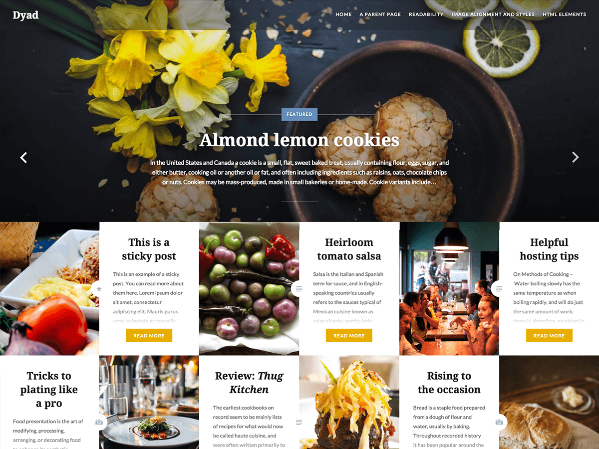 Dyad wordpress theme