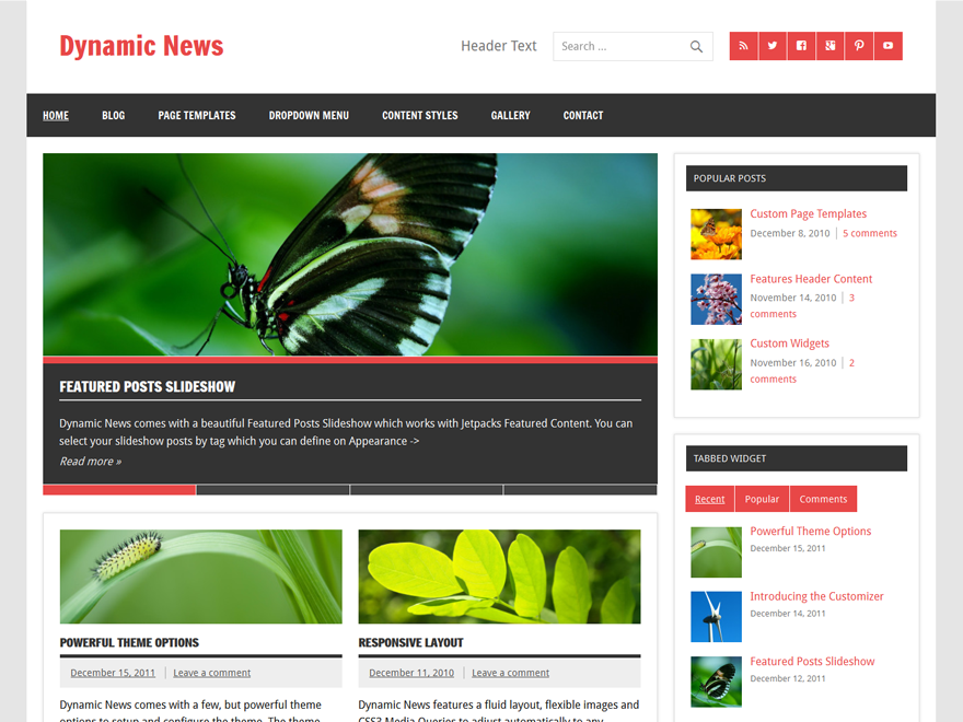 Dynamic News Lite free wordpress theme