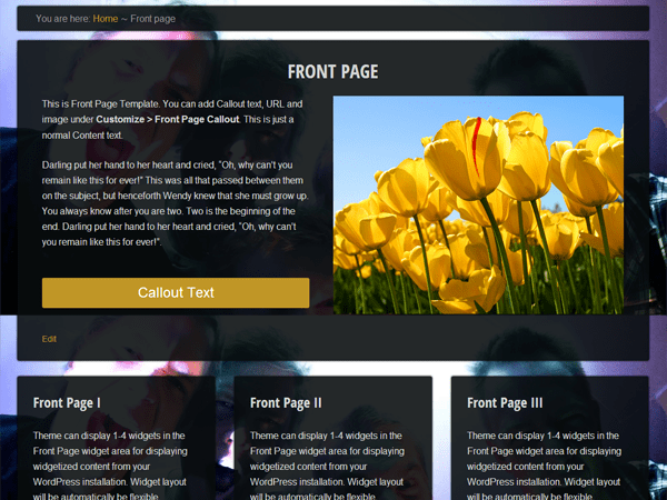 Eino theme wordpress gratuit
