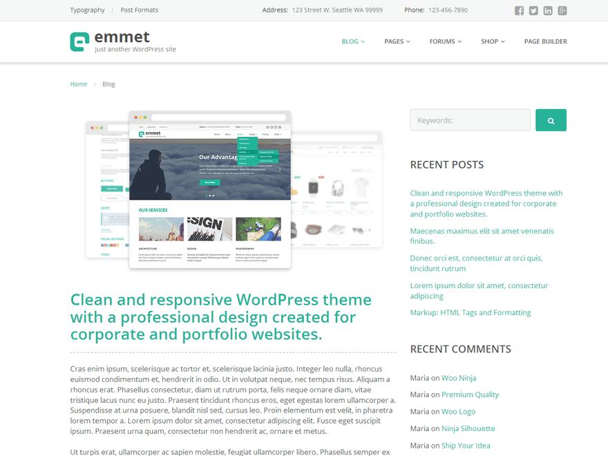 Emmet Lite free wordpress theme