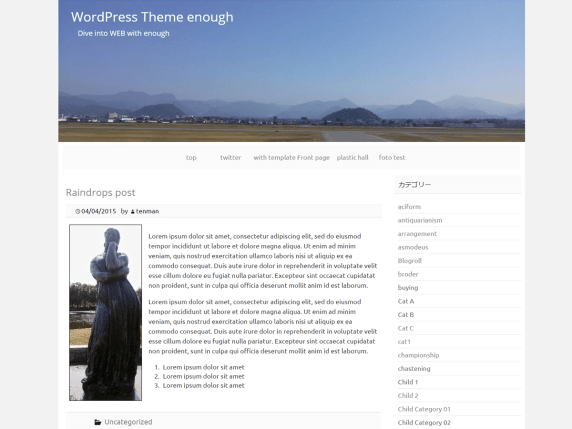 Enough wordpress theme