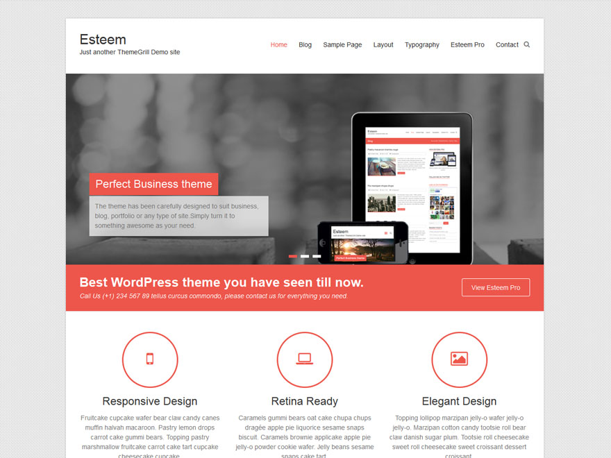 Esteem for Wordpress theme with multiple page templates