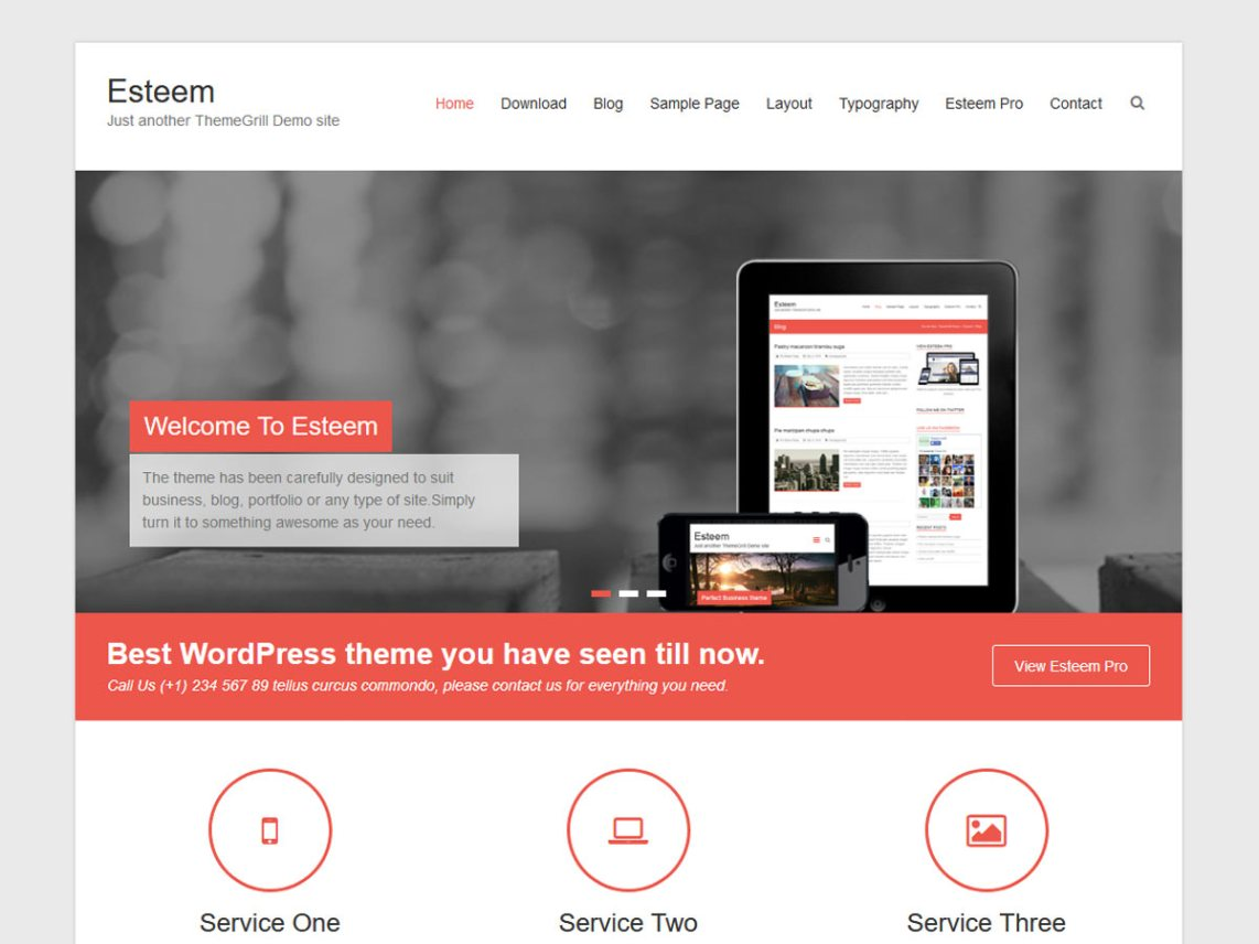 Esteem Wordpress