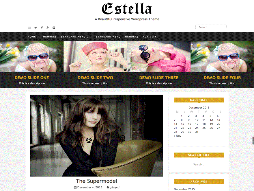 estella free wordpress theme