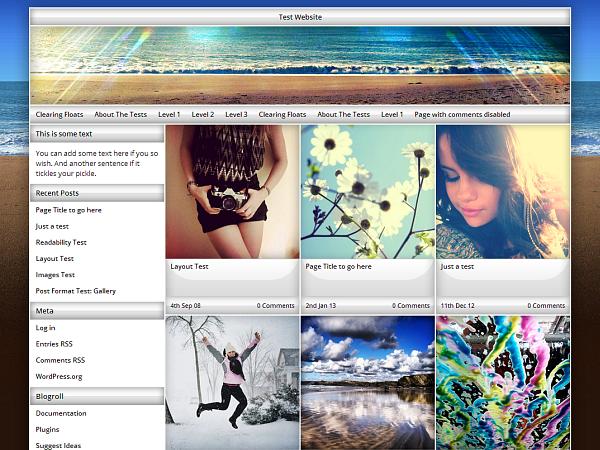 Exact free wordpress theme