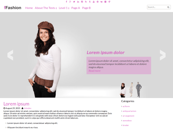 fFashion wordpress theme