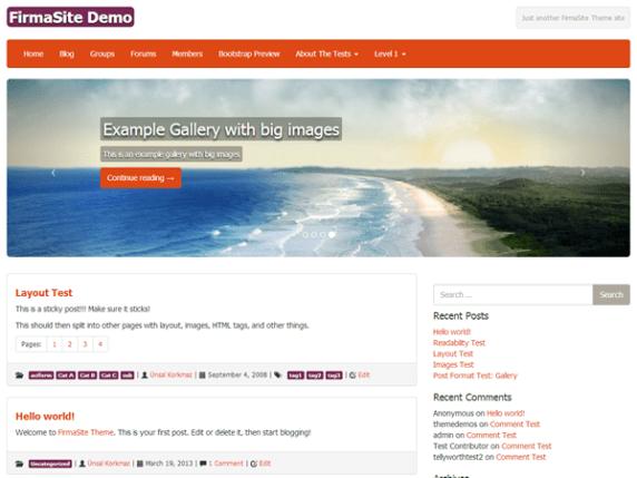 FirmaSite wordpress theme