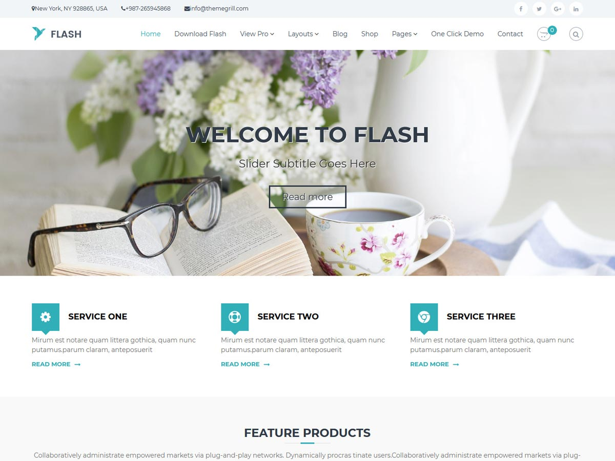 Plantilla flash wordpress gratis