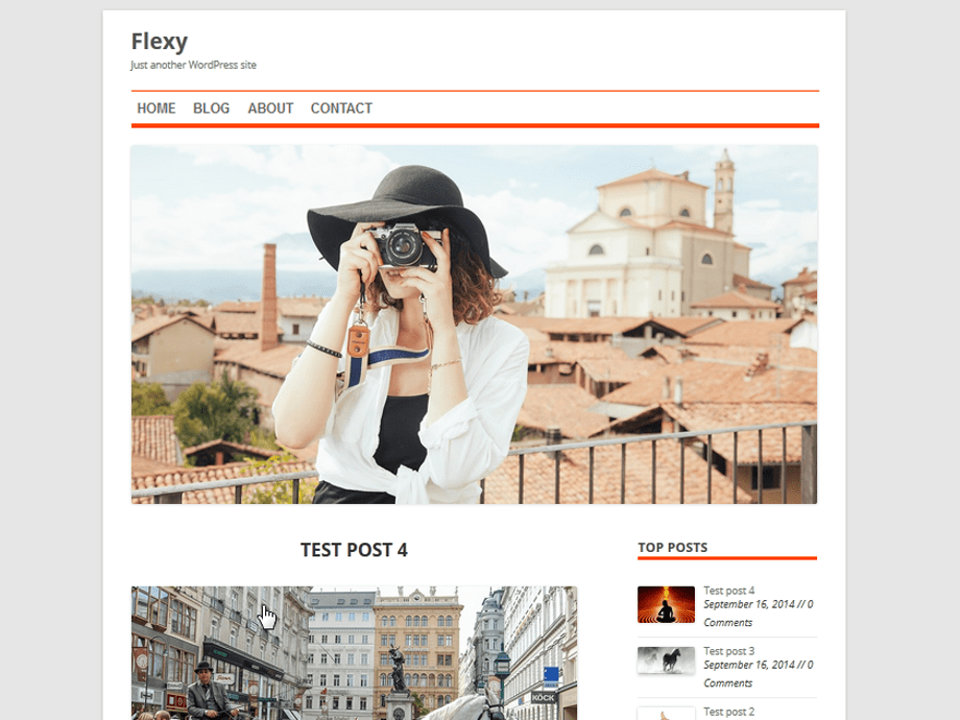 Flexy free wordpress theme